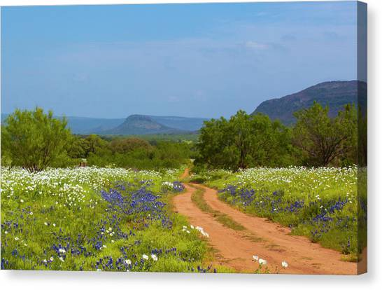 Red Dirt Road With Wild Flowers Canvas Print