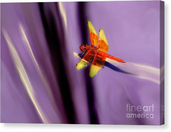 Red Dragonfly On Purple Background Canvas Print