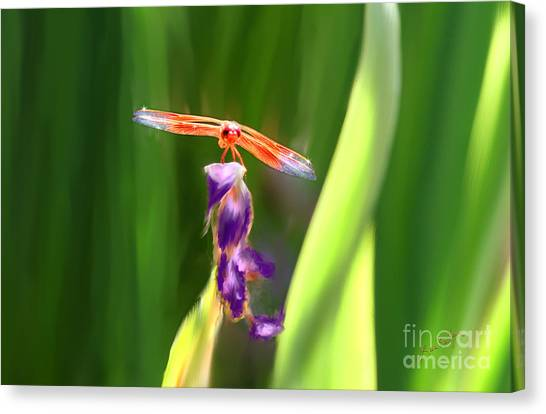 Red Dragonfly On Purple Flower Canvas Print
