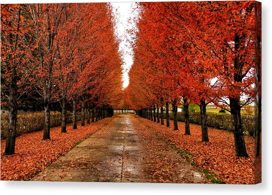 Red Drive Canvas Print