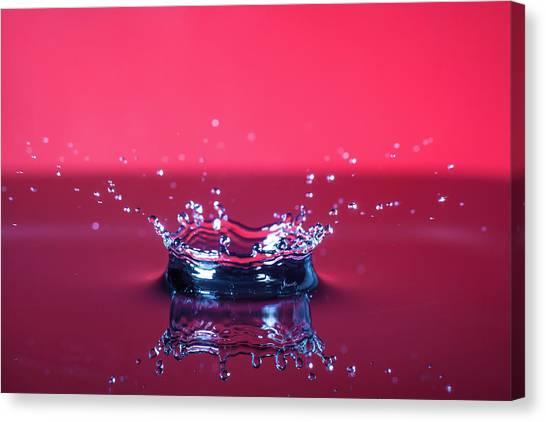 Red Drop Canvas Print