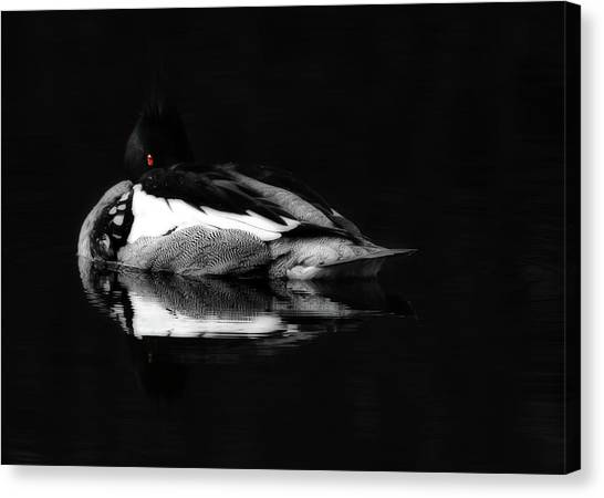 Loons Canvas Print - Red Eye by Lori Deiter