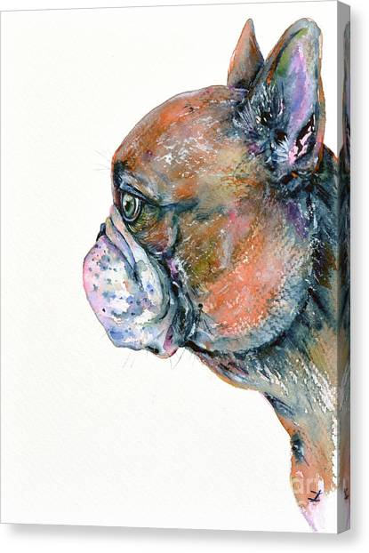 Red Fawn Frenchie Canvas Print