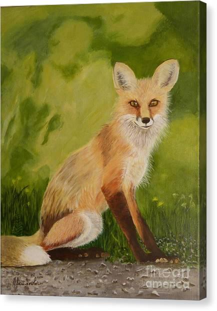 Red Fox 1 Canvas Print