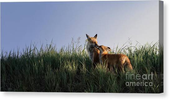 Canvas Print featuring the photograph Red Fox Morning by Brad Allen Fine Art