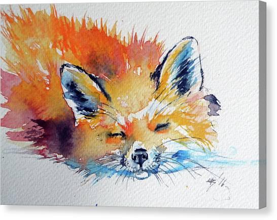 Red Fox Sleeping Canvas Print