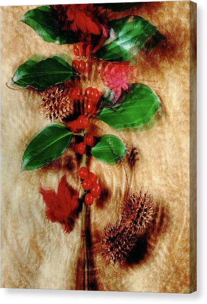 Red Holly Spinning Canvas Print