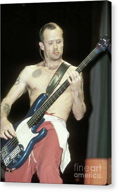 Red Hot Chili Peppers Canvas Print - Red Hot Chili Peppers Michael Balzary Flea by Concert Photos