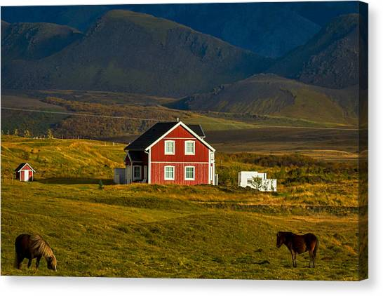 Red House And Horses - Iceland Canvas Print