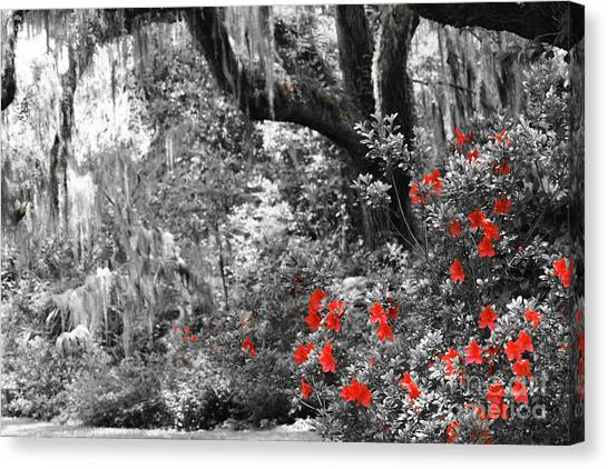 Canvas Print featuring the photograph Red In The Garden by Patti Whitten