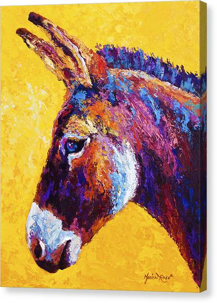 Donkeys Canvas Print - Red Jenny by Marion Rose