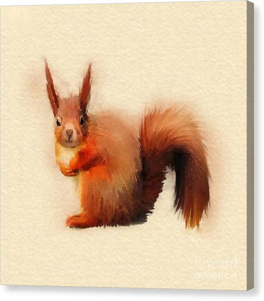 Squirrels Canvas Print - Red Squirrel by John Edwards