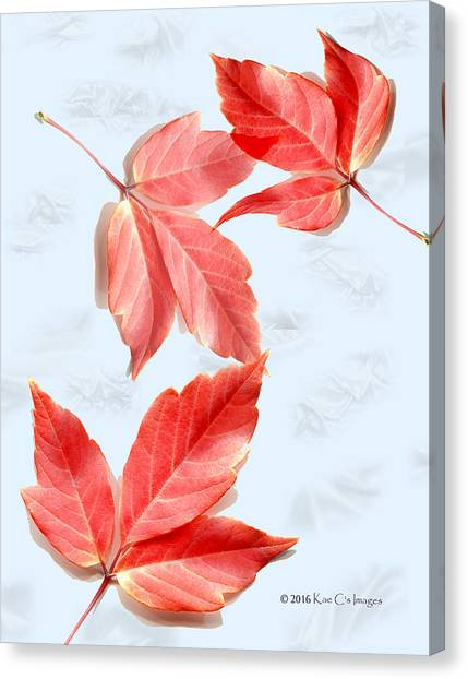Red Leaves On Blue Texture Canvas Print