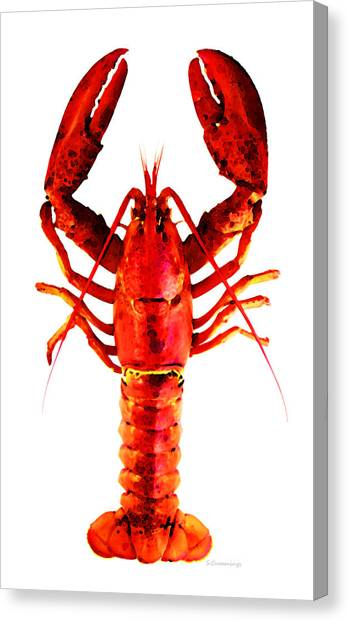 Lobster Canvas Print - Red Lobster - Full Body Seafood Art by Sharon Cummings
