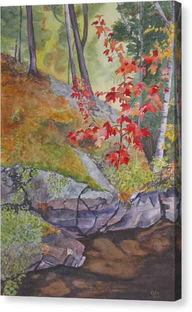 Red Maple Leaves Canvas Print by Debbie Homewood