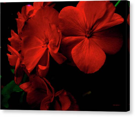 Red  Midnight Magic Flowers Canvas Print