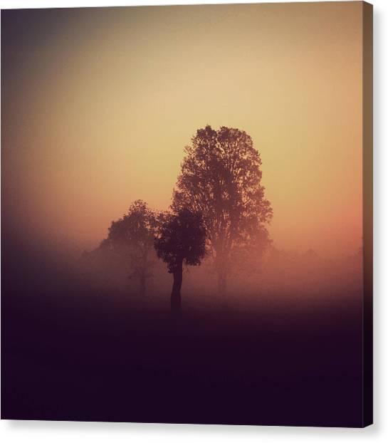 Red Mist Canvas Print by Yo Choowa