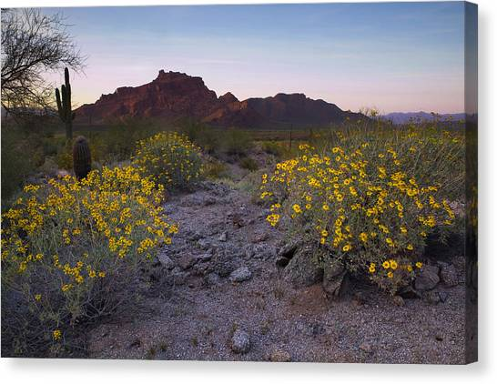 Red Mountain Dusk Canvas Print