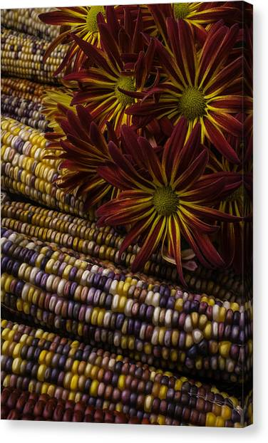 Indian Corn Canvas Print - Red Mums And Indian Corn by Garry Gay