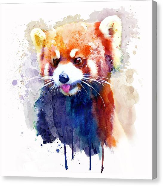 Panda Canvas Print - Red Panda Portrait by Marian Voicu