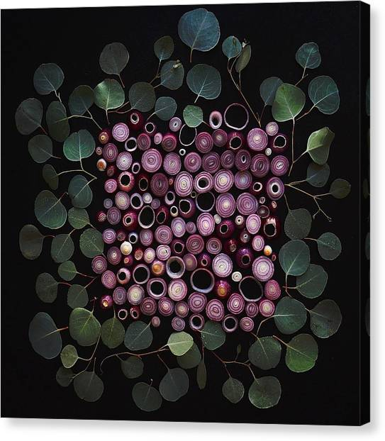 Red Pearl Onions Canvas Print
