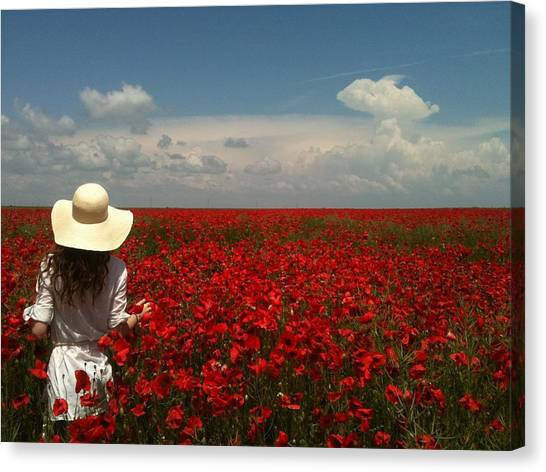Red Poppies And Lady Canvas Print