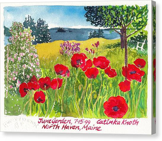 Red Poppies Coastal Maine Island June Garden North Haven  Canvas Print by Catinka Knoth