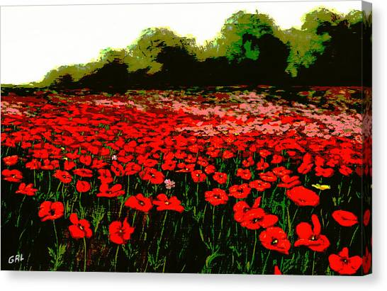 Red Poppies Landscapes Flowers Emerald Isle Multimedia Fine Art Canvas Print by G Linsenmayer