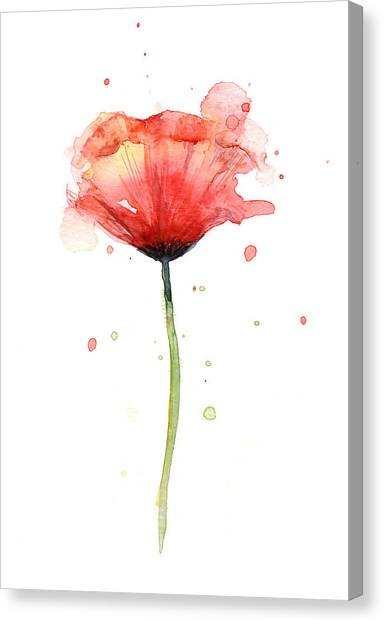 Spring Canvas Print - Red Poppy Watercolor by Olga Shvartsur