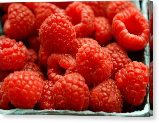 Red Raspberries Canvas Print by Sonja Anderson