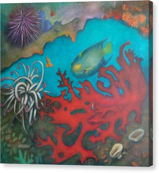 Red Reef Canvas Print