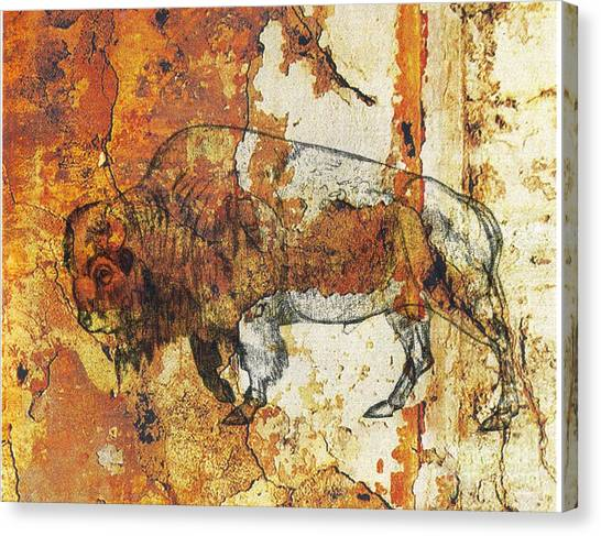 Red Rock Bison Canvas Print