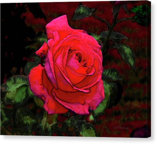 Red Rose Canvas Print by Joe Halinar