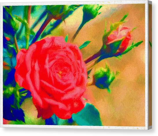 Border Wall Canvas Print - Red Rose Of Beauty by Debra Lynch
