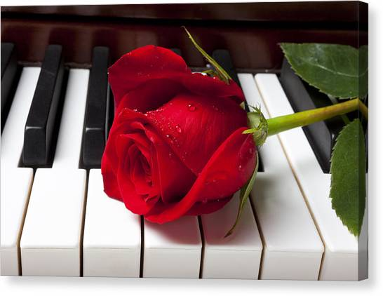 Horizontal Canvas Print - Red Rose On Piano Keys by Garry Gay
