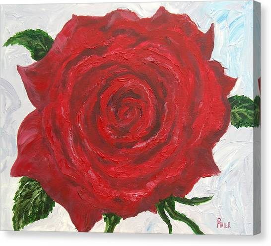 Red Rose Canvas Print by Pete Maier