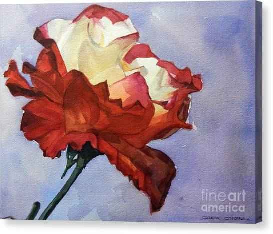 Watercolor Of A Red And White Rose On Blue Field Canvas Print