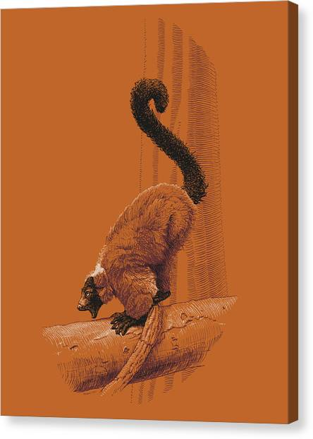 Screaming Lemur Canvas Print
