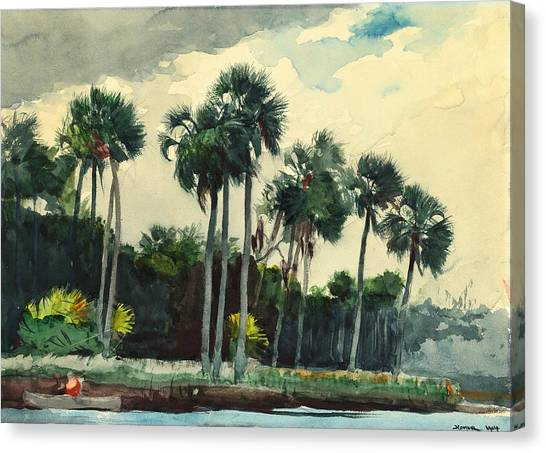 American Painters Canvas Print - Red Shirt Homosassa Florida by Winslow Homer