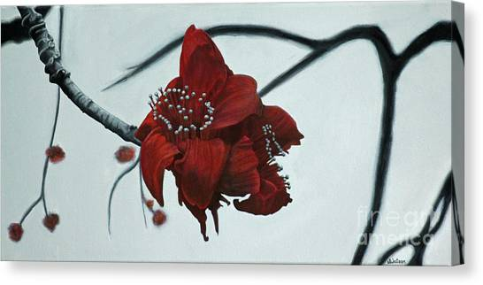 Red Silk Cotton Flower Canvas Print