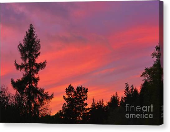 Red Sky At Night. Canvas Print by Stan Pritchard