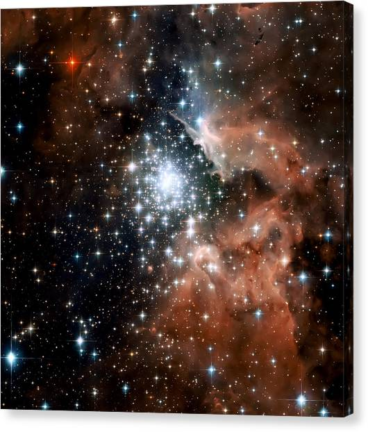 Astrology Canvas Print - Red Smoke Star Cluster by Jennifer Rondinelli Reilly - Fine Art Photography