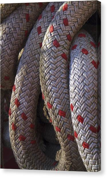 Red Speckled Rope Canvas Print