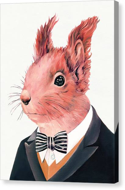 Squirrels Canvas Print - Red Squirrel by Animal Crew