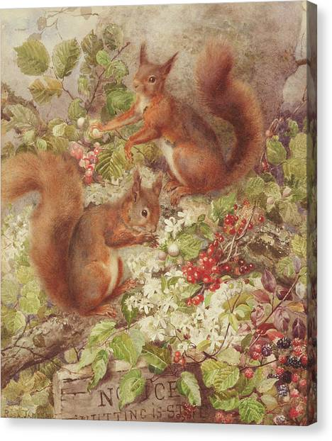 Bushy Tail Canvas Print - Red Squirrels Gathering Fruits And Nuts by Rosa Jameson
