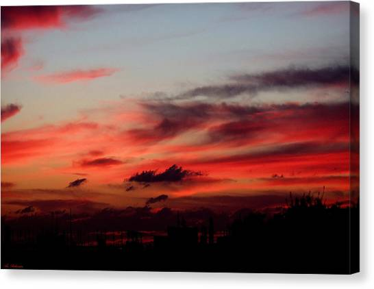 Red Sunset Canvas Print by Arik Baltinester