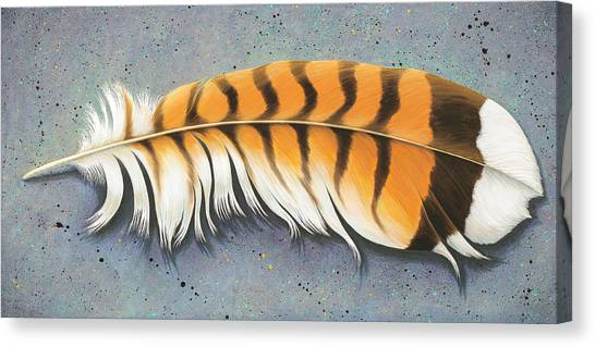 Red Tail Hawk Feather Canvas Print