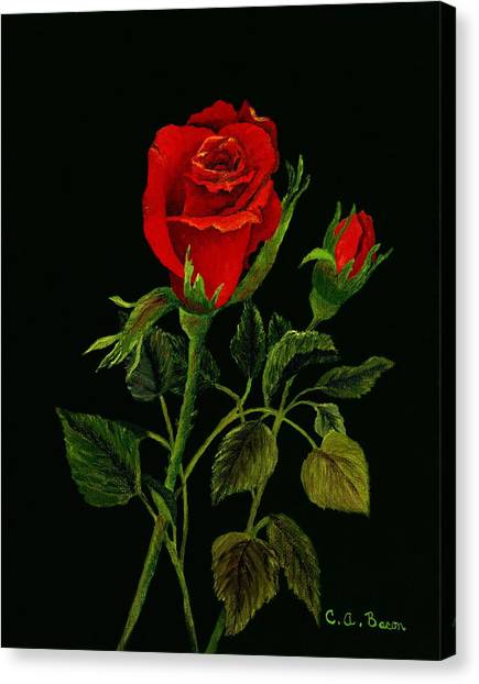 Red Tango Rose Bud Canvas Print