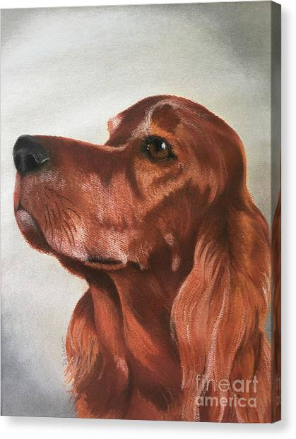 Red The Irish Setter Canvas Print