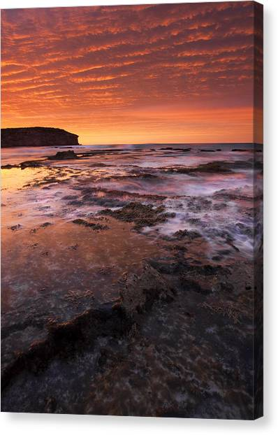 Pennington Bay Canvas Print - Red Tides by Mike  Dawson